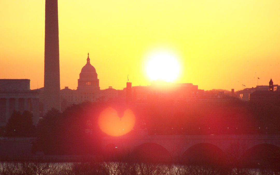Reason #2 to work with Together Solar in DC